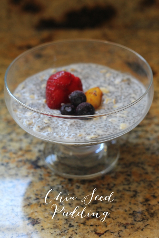 Chia Seed Pudding 21 Day Fix - TheSubtleStatement.com